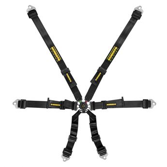 Picture of Schroth Flexi 2x2 FHR / HANS Harness